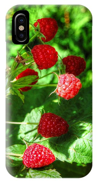 Raspberries IPhone Case