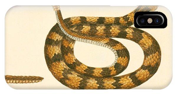 Rattlesnake IPhone Case