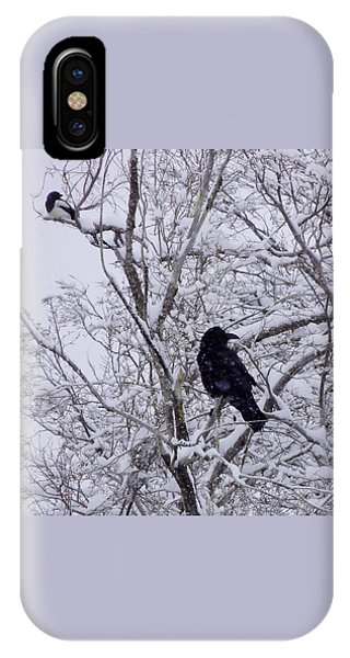 Raven And Magpie IPhone Case