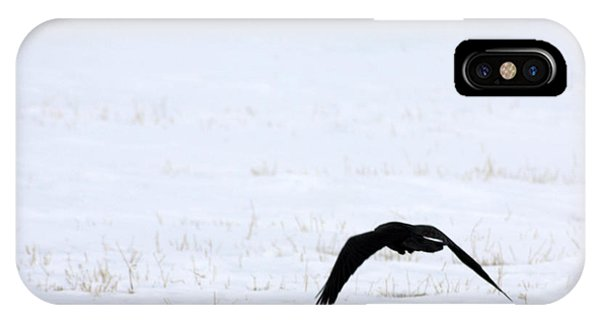Raven In The Snow IPhone Case
