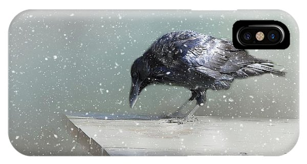 Raven In Winter IPhone Case