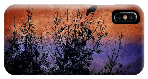 Raven Sentinel IPhone Case