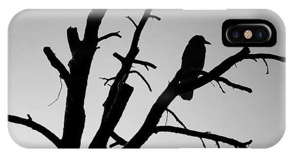 Raven Tree II Bw IPhone Case