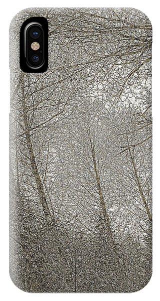 Ravenna IPhone Case