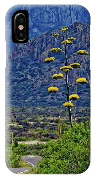 Middle Of Nowhere iPhone Case - Reaching For The Sky by Linda Unger