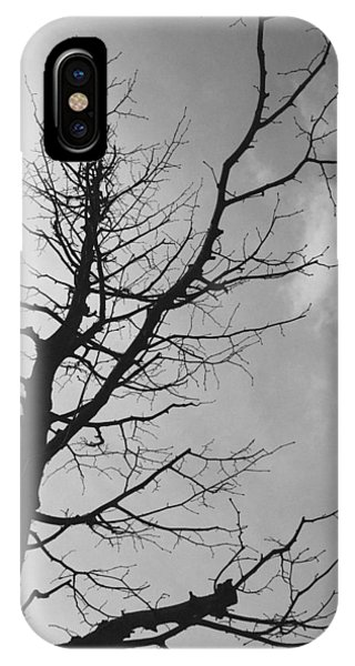 Twig iPhone Case - Reaching Out by Linda Woods
