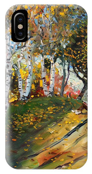 Reading iPhone Case - Reading In The Park  by Ylli Haruni