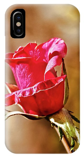 Rosebush iPhone Case - Ready To Pop by Robert Bales