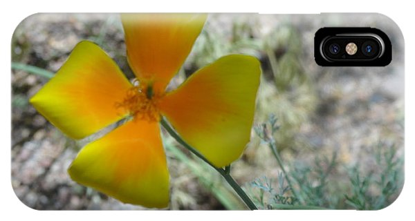 One Gold Flower Living Life In The Desert IPhone Case