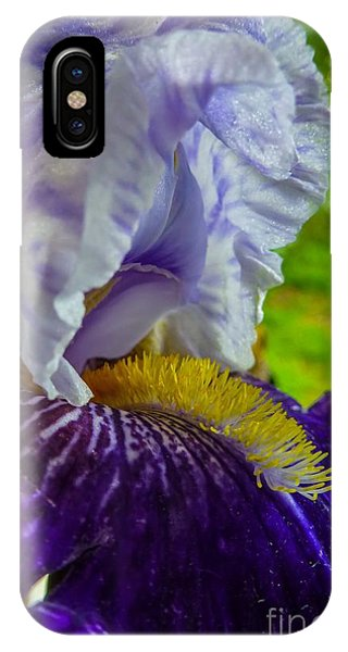 Recollection Spring 4 IPhone Case