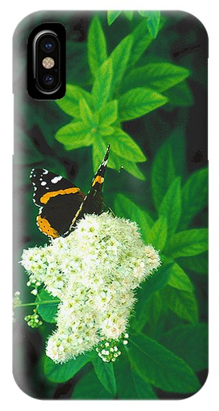 Red Admiral On Spirea IPhone Case