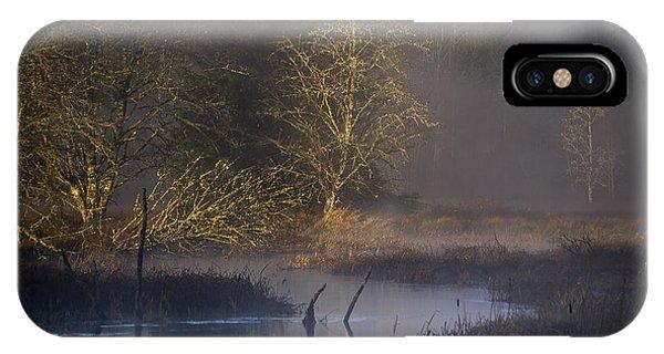 Red Alder Along Colewort Creek IPhone Case