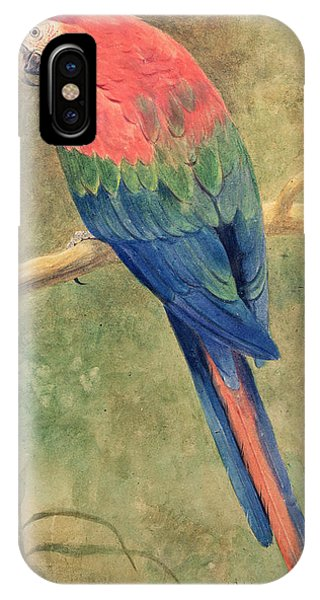Macaw iPhone Case - Red And Blue Macaw by Henry Stacey Marks