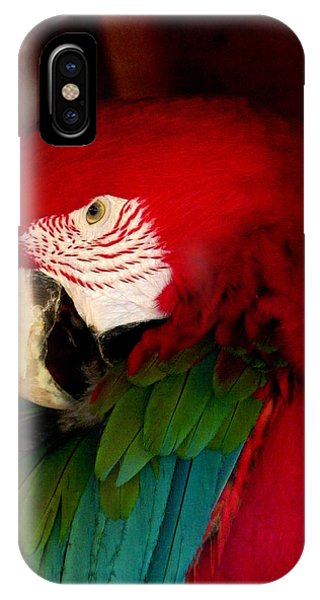 Red And Green Wing Macaw IPhone Case