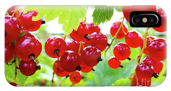 Red And Ripe IPhone Case
