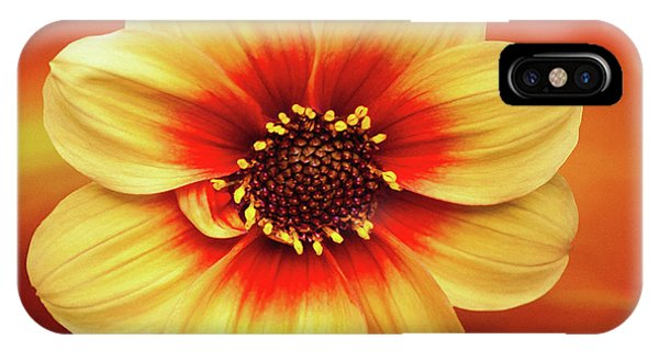 Red And Yellow Inspiration IPhone Case