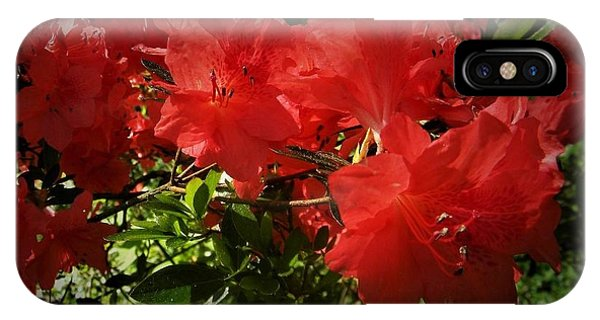Red Azalea IPhone Case
