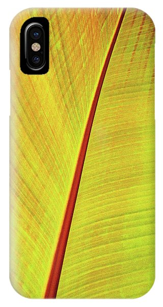 iPhone Case - Red Banana Palm 2 by Kathy Yates