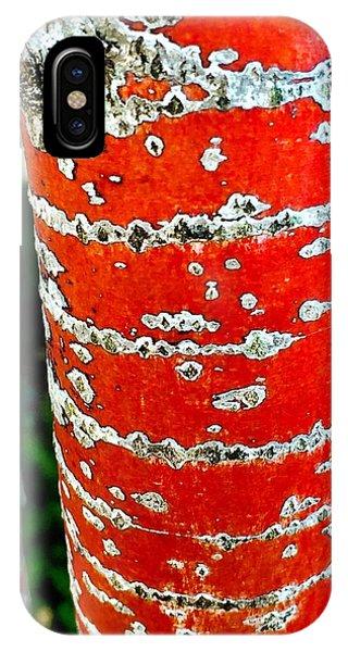 Red Bark Birch IPhone Case