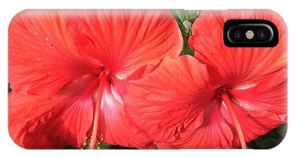 Red Beauties IPhone Case