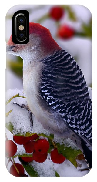 Red Bellied Woodpecker IPhone Case