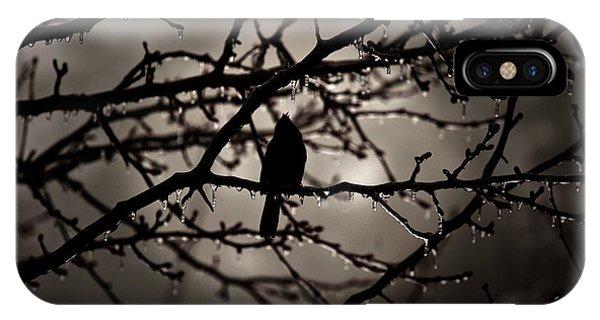 Red Bird At Dawn IPhone Case