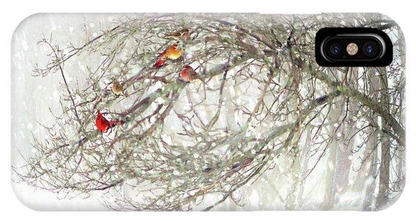 Red Bird Convention IPhone Case
