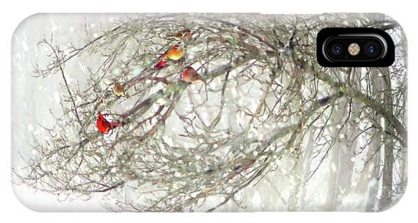 Red Bird Convention IPhone Case