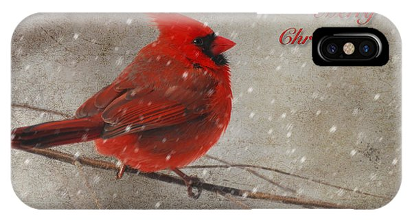 Red Bird In Snow Christmas Card IPhone Case