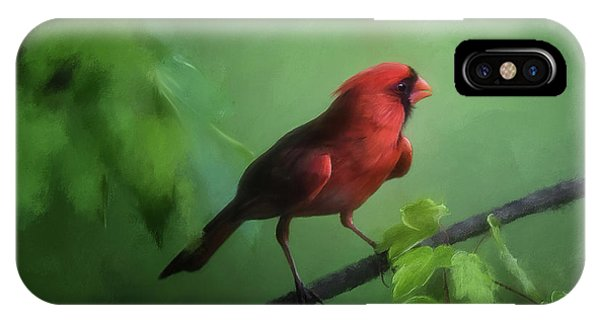 Red Bird On A Hot Day IPhone Case