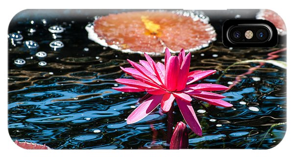 Red Blossom Water Lily IPhone Case