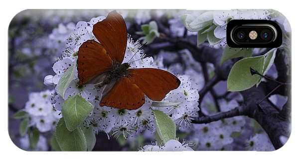 Pollination iPhone Case - Red Butterfly On Cherry Blossoms by Garry Gay