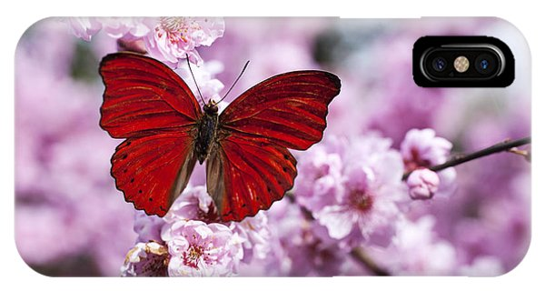 Beautiful iPhone Case - Red Butterfly On Plum  Blossom Branch by Garry Gay