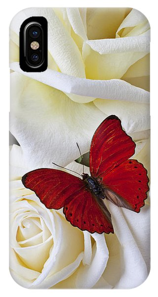 Insect iPhone Case - Red Butterfly On White Roses by Garry Gay