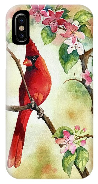 Red Cardinal And Blossoms IPhone Case