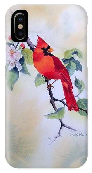 Red Cardinal  IPhone Case