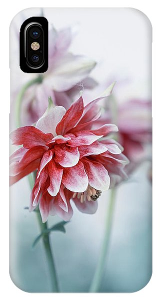 iPhone Case - Red Columbines by Jaroslaw Blaminsky