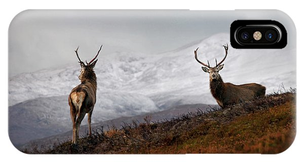 Red Deer Stags IPhone Case