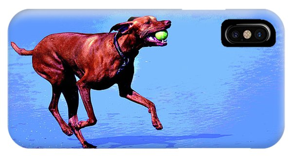 Red Dog Running IPhone Case