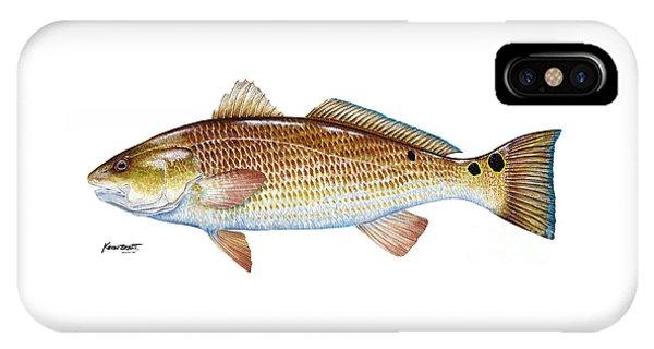 Red Drum  Redfish IPhone Case