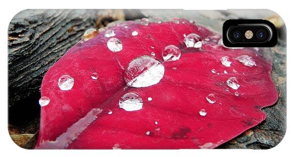 Red Fall Leaf IPhone Case