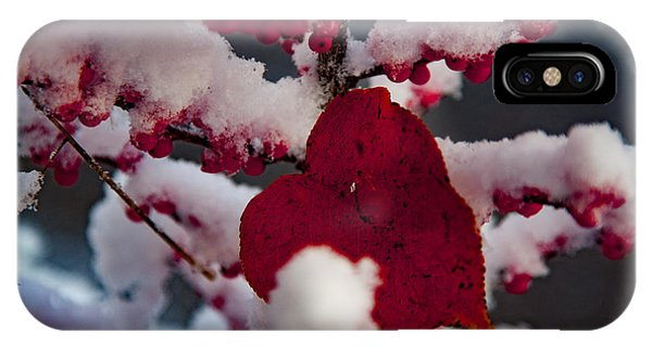 Red Fall Leaf On Snowy Red Berries IPhone Case