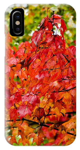 IPhone Case featuring the photograph Red Fall Leaves by Don and Bonnie Fink