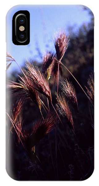Red Feathers IPhone Case