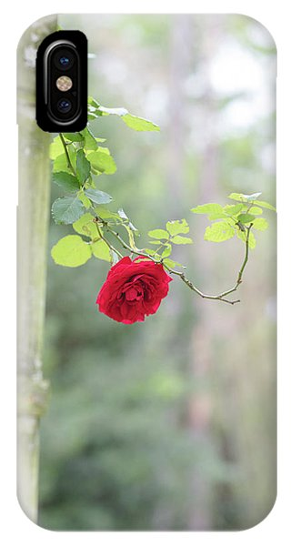 Red Flower Garden IPhone Case