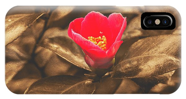 IPhone Case featuring the photograph Red Flower On Sepia Background by Jacek Wojnarowski