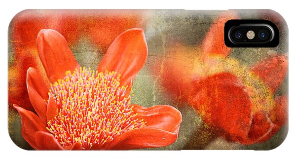 Texture iPhone Case - Red Flowers by Larry Marshall