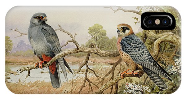 Red-footed Falcons IPhone Case