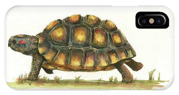 Reptiles iPhone Case - Red Footed Tortoise  by Juan Bosco