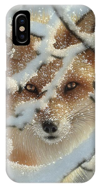 Red Fox - Hide And Seek IPhone Case